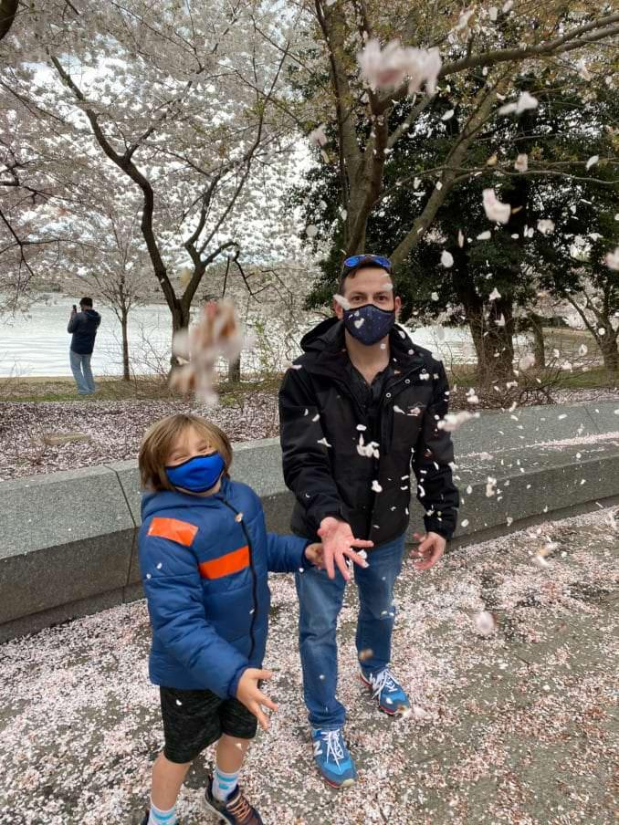 washington dc cherry blossoms april 01 2021 31 cherryblossomwatch com 678x904 - Reader Photos 2021 | Part 1