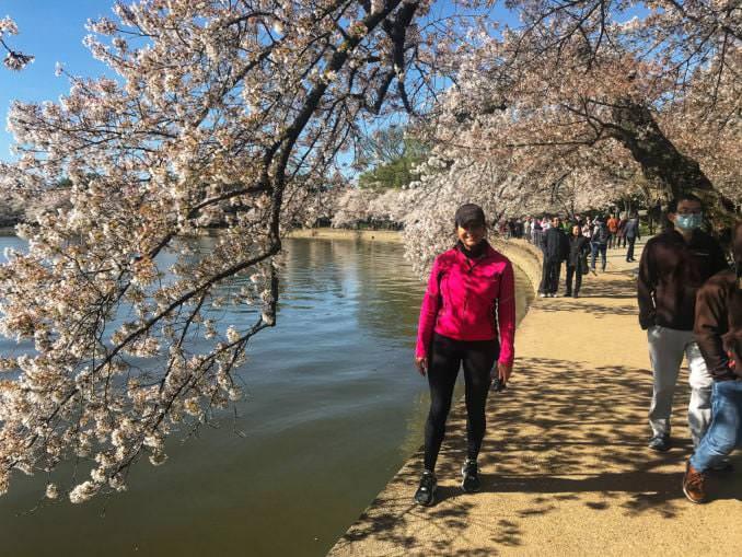 washington dc cherry blossoms april 03 2021 15 cherryblossomwatch com 678x509 - Reader Photos 2021   Part 2