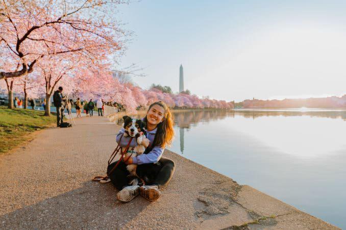 washington dc cherry blossoms march 26 2021 01 cherryblossomwatch com 678x452 - Reader Photos 2021 | Part 1
